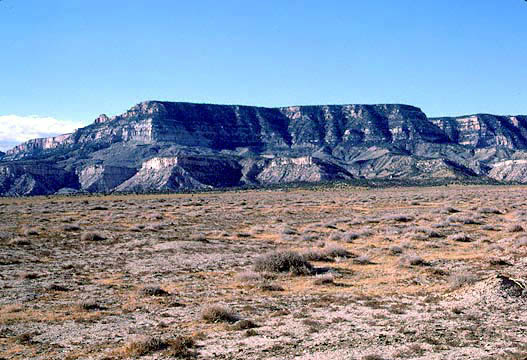 Environmental Groups Gain Court Victory Over Peabody Coal on Black Mesa